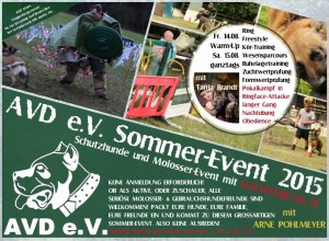 flyer medi sommer event 2015